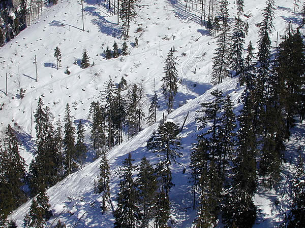 The gullies at the Laber ski area